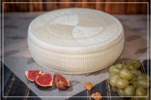 Сыр Качотта 14 дней выдержки